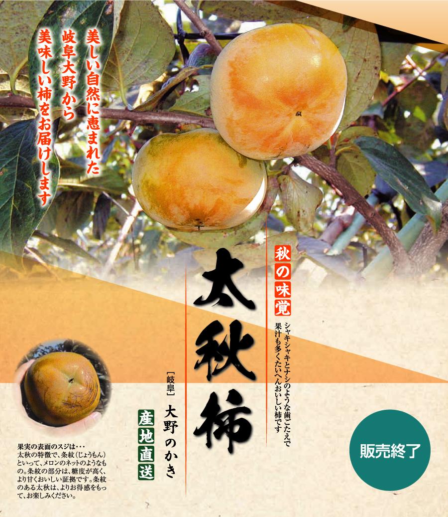 美しい自然に恵まれた岐阜大野町から美味しい柿をお届けします