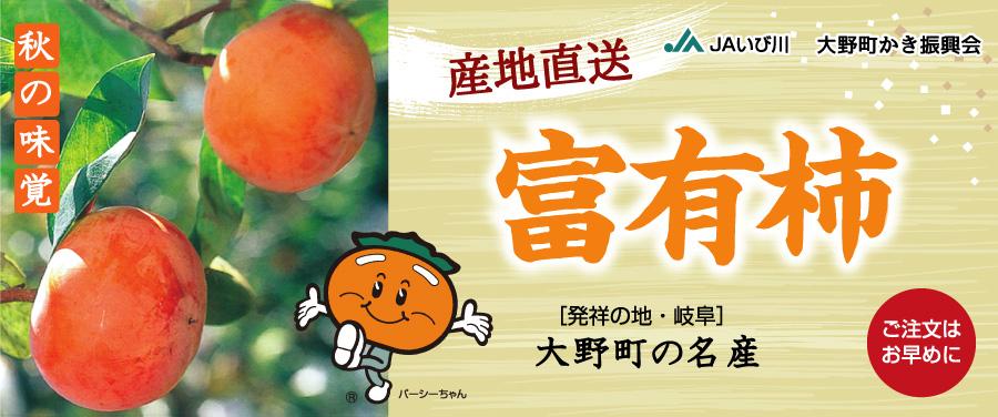 秋の味覚 富有柿を産地直送[発祥の地・岐阜]大野町の名産