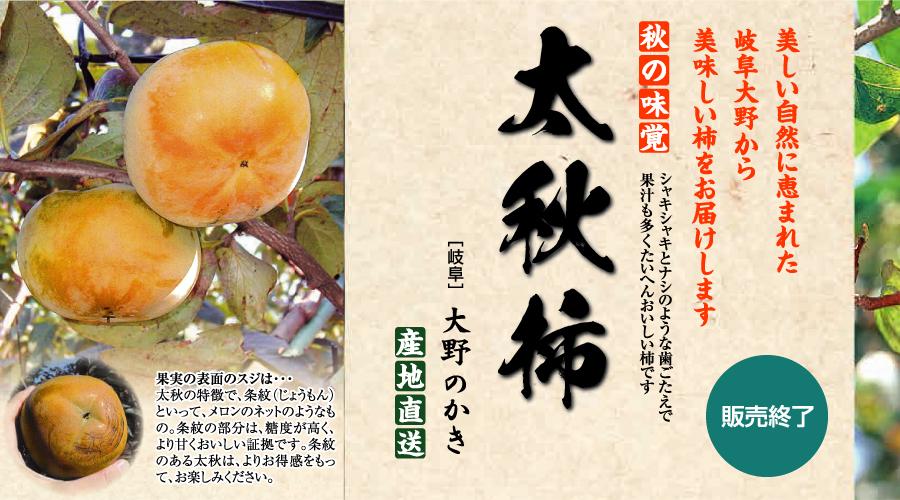 秋の味覚 太秋柿を産地直送[岐阜]大野町の名産